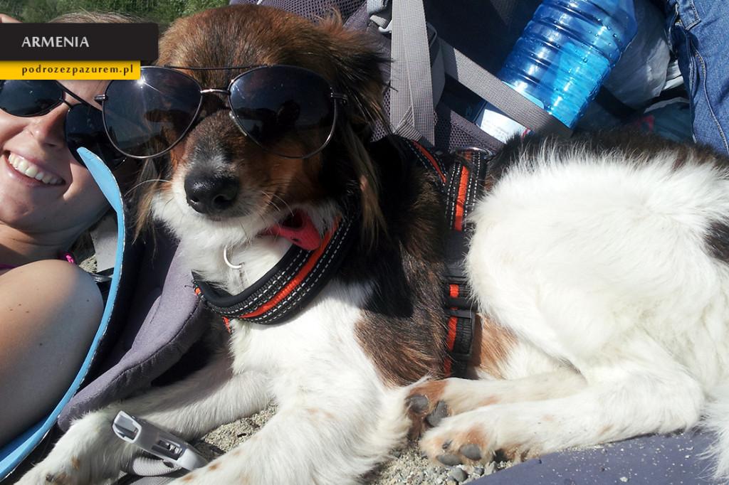 Snupi docenił okulary podczas plażowania, spędził w nich ponad 15 minut